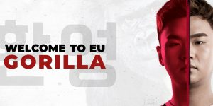 Welcome to EU GorillA!